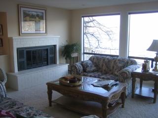 Lake Washington Fireplace Before