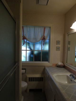 Viewridge Bath Before